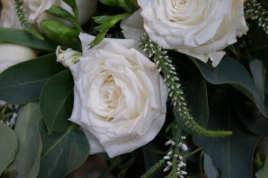 White Rose and Veronica Flowers