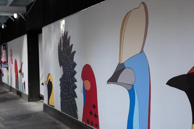 Australian birds creating Urban Art in Sydney