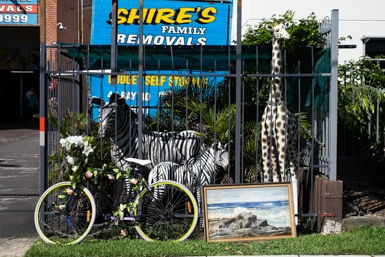 Shire's Family Removals