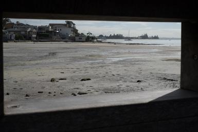 Taren Point Shoreline Reserve