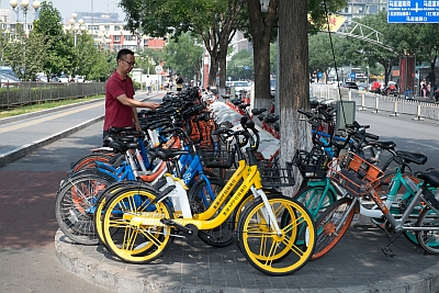 Sharing Bicycles in Beijing