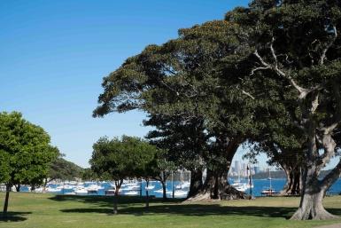 Robertson's Park Watson's Bay