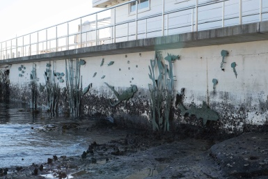 Watsons Bay Baths