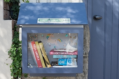 Street Library Waverton