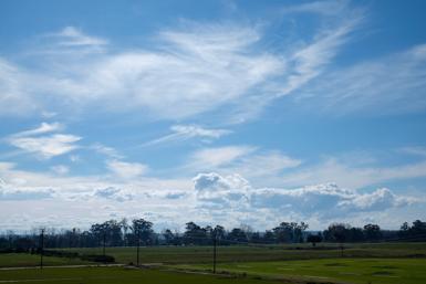 Windsor Countryside