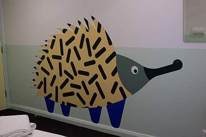 Quirky Echidna graces the wall of private room in Central Sydney YHA